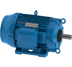 WEG Cooling Tower Motors