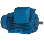 Crusher Duty Motors