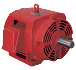 WEG Fire Pump Motor