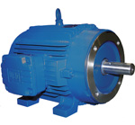 WEG Vector Duty Motors